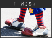 1 wish widget off of my blog
